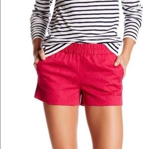 J Crew Boardwalk Shorts